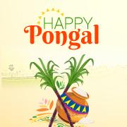 Happy Pongal - Zuan Technologies