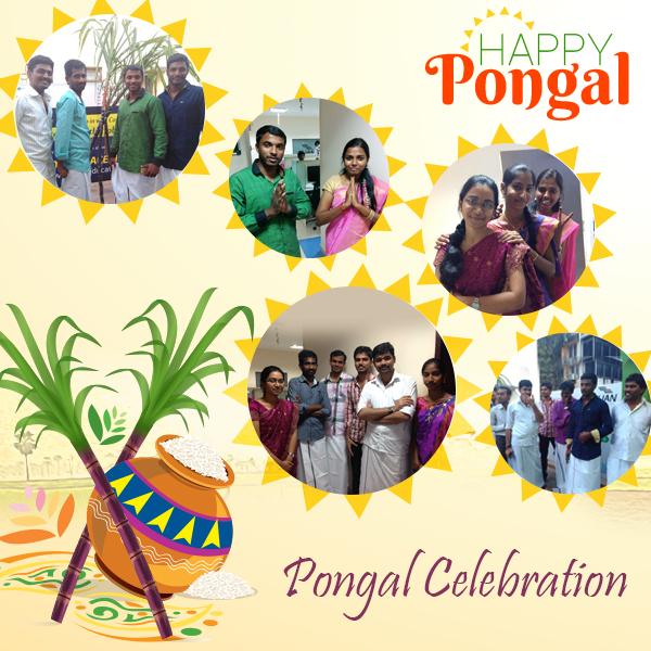 Zuan Technology Pongal Celebration